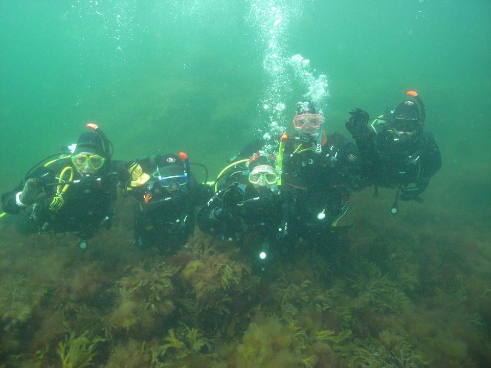 Dykare under vattnet