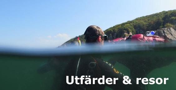 freediver_banner_utf