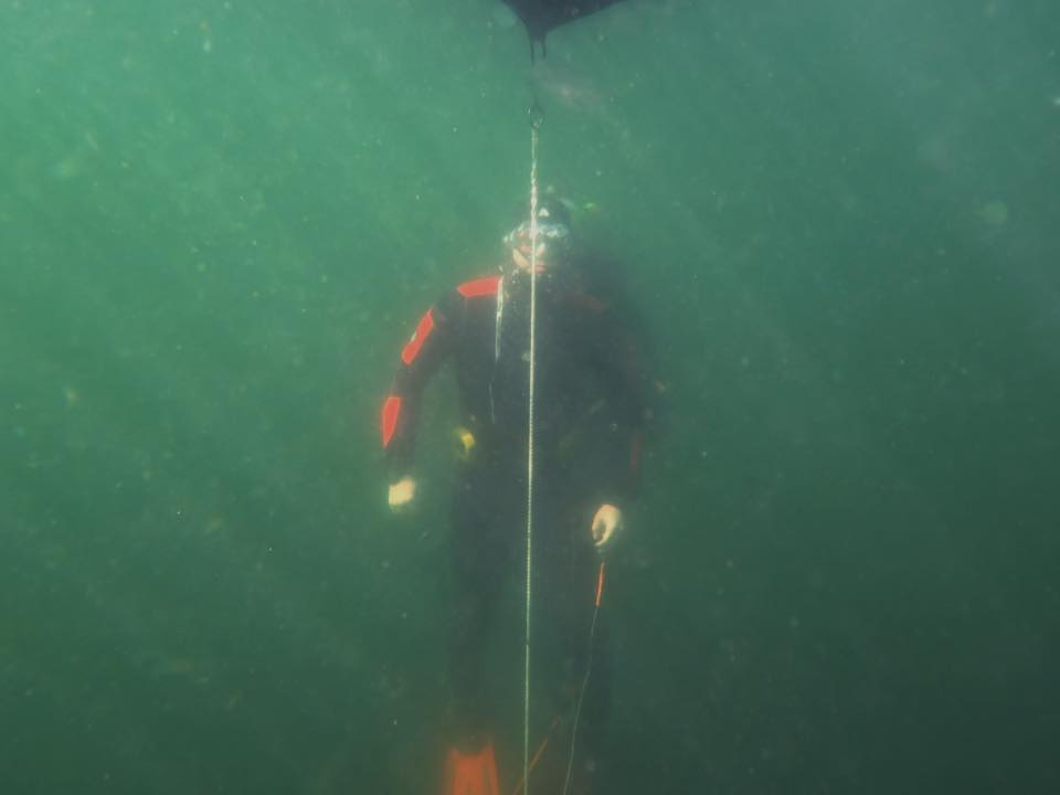 freediver_fd7