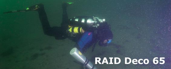 raiddeco65banner