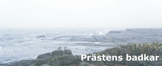 utf_prasten_banner