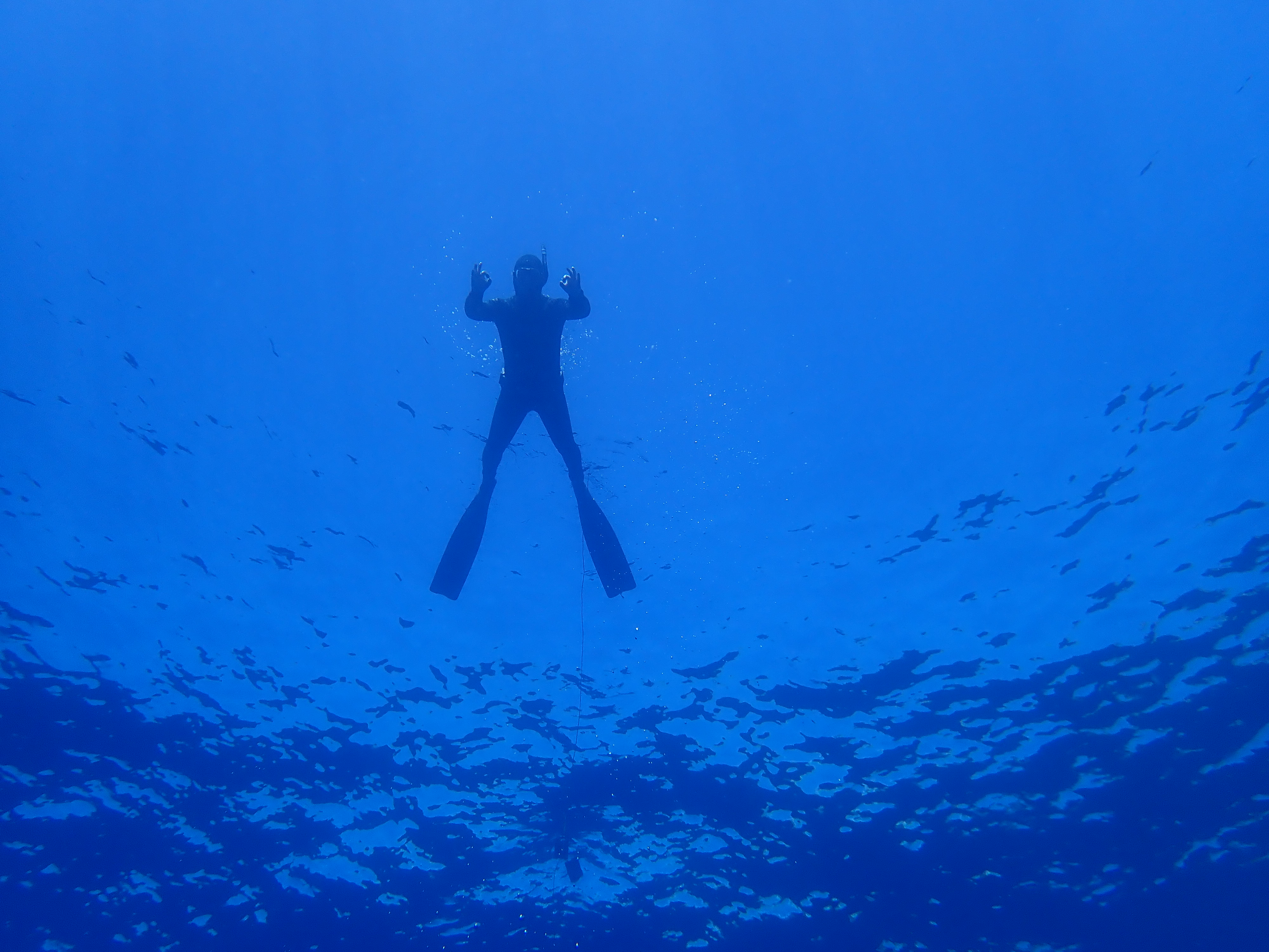 Freediver at the surface