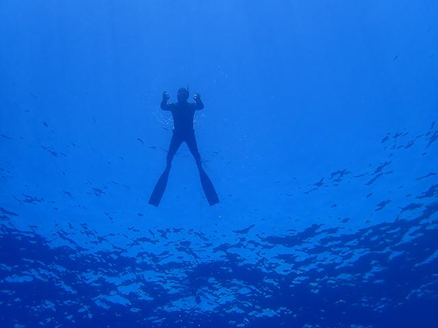 Från pool till hav